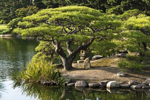 Zen-Gärten / Japanische Gärten